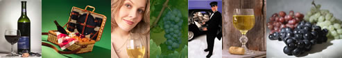 North Fork Vineyard Tourss - LI Winery Tours - specializing in limousine services for wine tasting in the Long Island, New York area.  Tours featuring professional chauffeurs, luxury sedans, stretch limousines, vans, more.